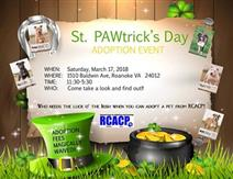 St. PAWtrick's Day Event